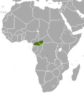 Congo Golden Mole area.png