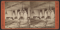 Congress Parlor, Saratoga, N.Y, from Robert N. Dennis collection of stereoscopic views.png