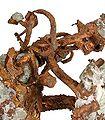 Copper-hc14b.jpg