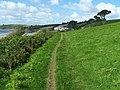 Cornish Coastal Path Approaching Carne Beach - geograph.org.uk - 1476473.jpg