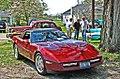 Corvette under a tree (3576441169).jpg