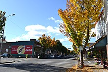Cottage Grove Historic District.jpg