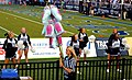 Cotton Candy, Monarch Cheerleaders Final Score (11367326125).jpg