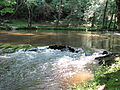 Crabtree Creek Company Mill Trail Umstead NC SP 0080 (3583834500).jpg