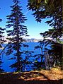 Crater Lake through trees, OR 8-13 (20549796669).jpg