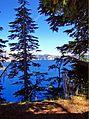 Crater Lake through trees, OR 8-13 (20549796669).jpg