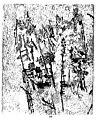 Crevel - Feuilles éparses, 1965 (page 19 crop).jpg