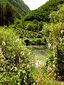 Crni Drim River 81.JPG