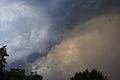 Cumulonimblus clouds over Altai 13.JPG