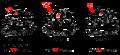 Cyclothiazomycin-family.png
