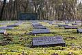 Dülmen, Hausdülmen, Ehrenfriedhof -- 2015 -- 5403.jpg