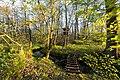 Dülmen, Kirchspiel, Naturschutzgebiet -Franzosenbach- -- 2017 -- 7030.jpg