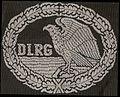 DLRG-Rettungsschwimmabzeichen Silber (Stoffabzeichen).jpg