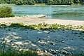DSC 1758 Kiesinsel an der Donau.jpg