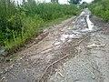 Dallan Thal Rd 41 - panoramio.jpg