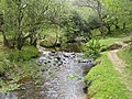 Dartmoor, Becka Brook - geograph.org.uk - 435545.jpg