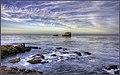 Dawn At Bird Rock (186470419).jpeg