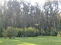 Day trip to the Botanical Gardens - panoramio (7).jpg