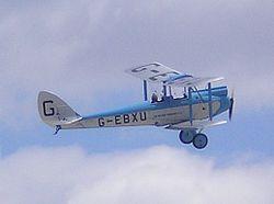 De Havilland DH.60 Moth flying-detail.jpg