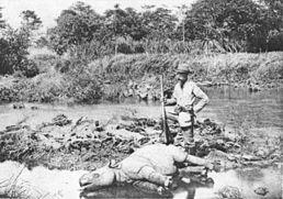 Nosorožec jávský zabit evropským lovcem - 1895