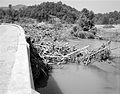 Debris on Rockfish River (7797550188).jpg
