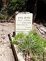 Degania Alef Cemetery Miryam Baratz.JPG