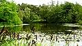 Denmark - Copenhaguen, Botanisk Haves - panoramio (1).jpg