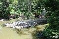 Denver Zoo 25.jpg
