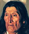 Detail, Hubert Vos- Sioux Chief In Buffalo Robes (cropped).jpg