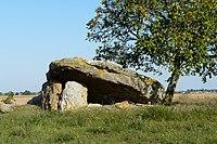 Dolmen de-la-Bie-Champigny-le-Sec-F86-PA00105676-0.14042973518371582-46.70366632056926.jpg