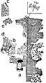 Drawing of Manichaean Fragment with Jesus Figure.jpg