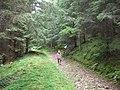 Drumul la rapa in vale - panoramio.jpg
