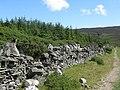 Dry Stone Wall - geograph.org.uk - 1424082.jpg