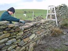 using a batterframe and guidelines to rebuild a dry stone wall in south wales uk
