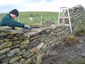 Batter (walls) - Image: Dry Stone wall building