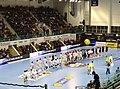 Dunkerque vs Saint-Raphaël 2017 Handball.jpg