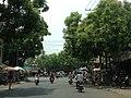 Duong pho -Tx hong ngu dong thap - panoramio.jpg