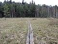 Dusetų sen., Lithuania - panoramio (147).jpg
