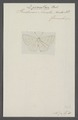 Dysmathia - Print - Iconographia Zoologica - Special Collections University of Amsterdam - UBAINV0274 049 20 0041.tif