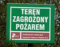 Dziewicza Gora (osada, village) (13).JPG