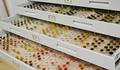 Echantillonnage pour restauration de tapis.png
