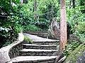 Edakkal Caves - panoramio.jpg