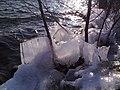Eisbildung am Strandweg - panoramio.jpg