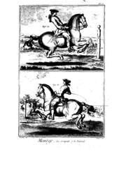 The croupade (above) and ballotade (below)
