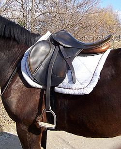 English saddle.jpg