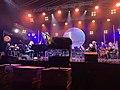 Enter Enea Festival 2020 - Leszek Możdżer & Amadeus Orchestra 22.08.2020.jpg