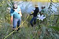 Environmental managers survey last years plantings (9420432324).jpg