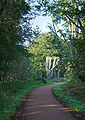 Epping Forest Centenary Walk 1 - Sept 2008.jpg