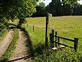 Erme-Plym trail - geograph.org.uk - 1379635.jpg