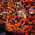 Esqueleto día de muertos.jpg